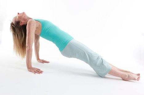 800px-Putvottanasana_-_Upward_Plank_Pose_1_-_Diagonal_View